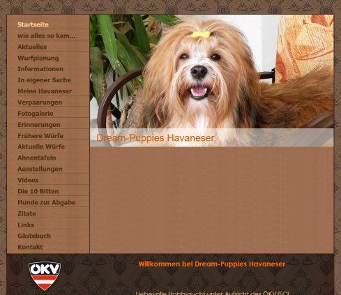 Havaneserzucht Dream Puppies Havaneser 2020